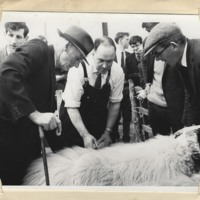 Carsphairn Show 1969