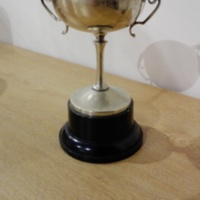 Object_201_Trophy_1.jpg