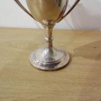 Object_268_Trophy_1.jpg
