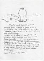 Wildlife of the Glenkens