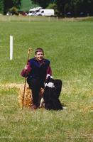 David Bell with Mop at Grampian Sheepdog Trials