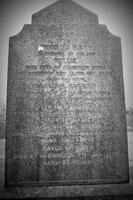 Kirkyard gravestone 219