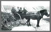 Pony and Trap took the Templeton Children to Stroanfreggan School for several years from 1917