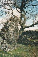 Ruins of Lamloch Kirk