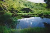Green Well of Scotland