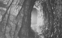 Wanlockhead mine – adit